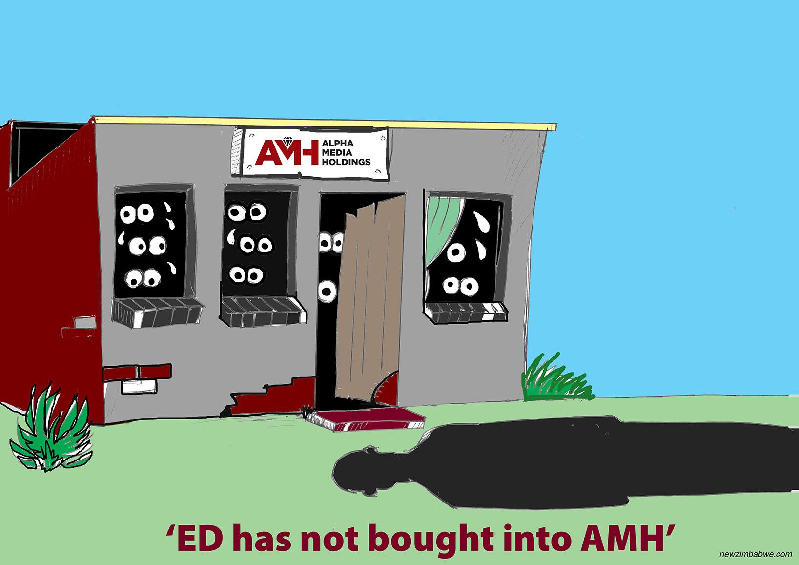 Mnangagwa has not bought into AMH