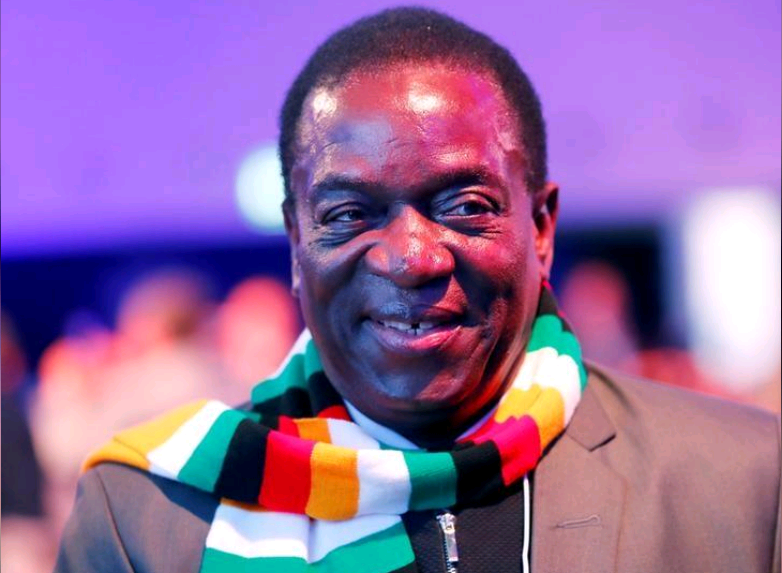 WATCH: Mnangagwa says to prosecute those found with cockroaches in their homes