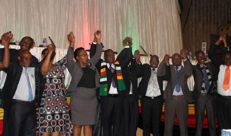 Zimbabweans Roundly Dismiss Mnangagwa's POLAD