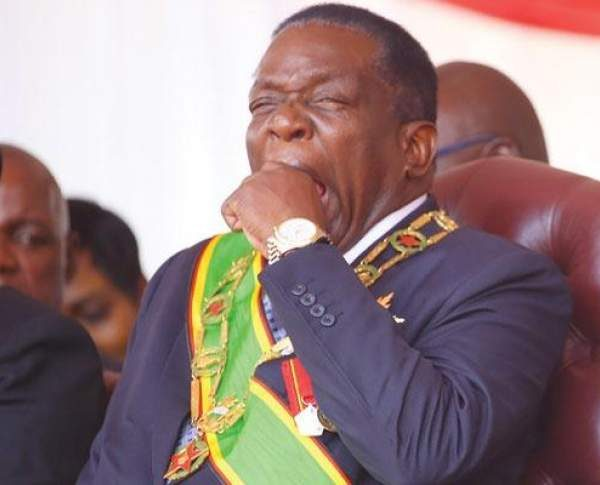 ED shuts door on Zim intervention, says crisis only in opponents' bedrooms