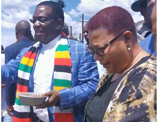 Khupe defends Mnangagwa farm excursion