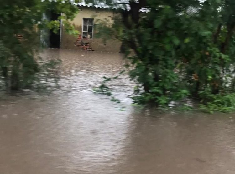 Clogged Waterways Leave Karoi Houses Flooded
