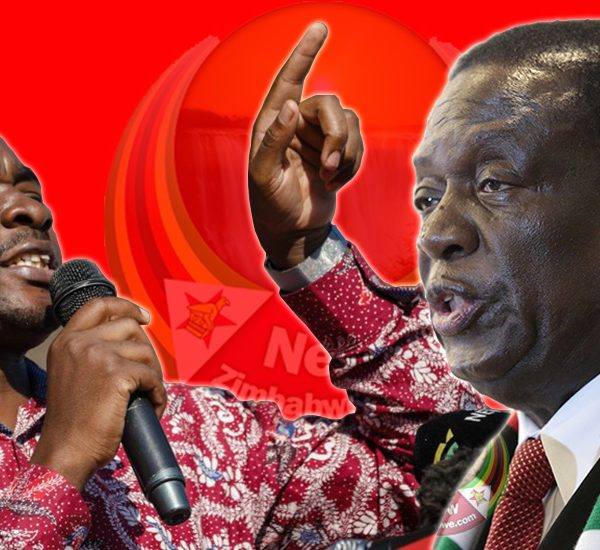 Zimbabweans Lost Out By Voting For ED, Chamisa - Madhuku