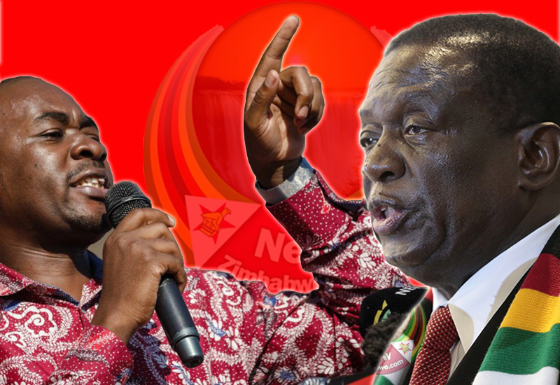 Zimbabweans Lost Out By Voting For ED, Chamisa – Madhuku