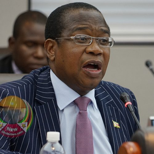 Mthuli Ncube's new agriculture financing model fails to lower costs