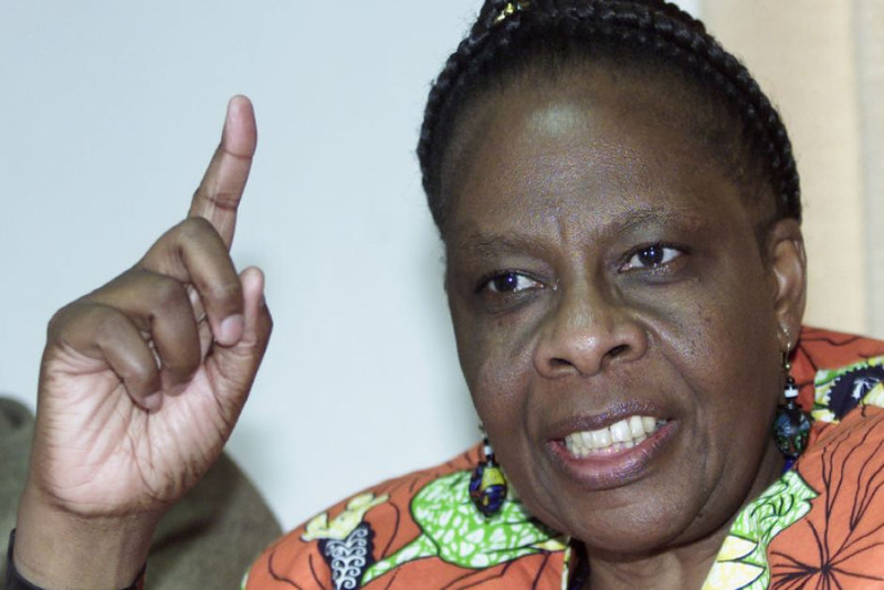 Ex-Minister Holland says she cried over Chiwenga, SB Moyo capture