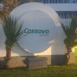 Cassava Smartech's Insurtech Revenue Up 15%