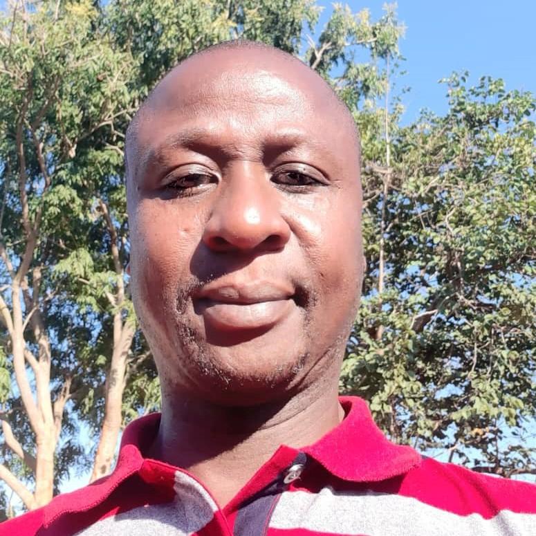 China interfering with Zimbabwean constitution – Anti-graft activist