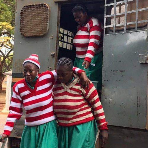 Judge reserves ruling in Mamombe, activists' freedom bid