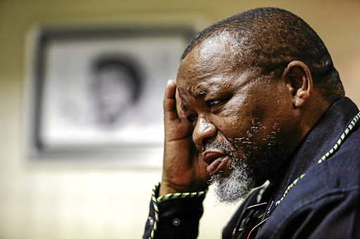 SA Minister Mantashe discharged from hospital