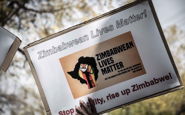Zanu PF Benefactor Fires Maid Over #ZimbabweanLivesMatter