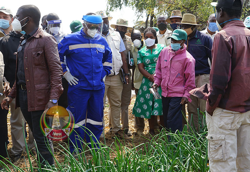IN PICTURES: VP Chiwenga Encourages Farmers To Venture Into Oil Seed Farming