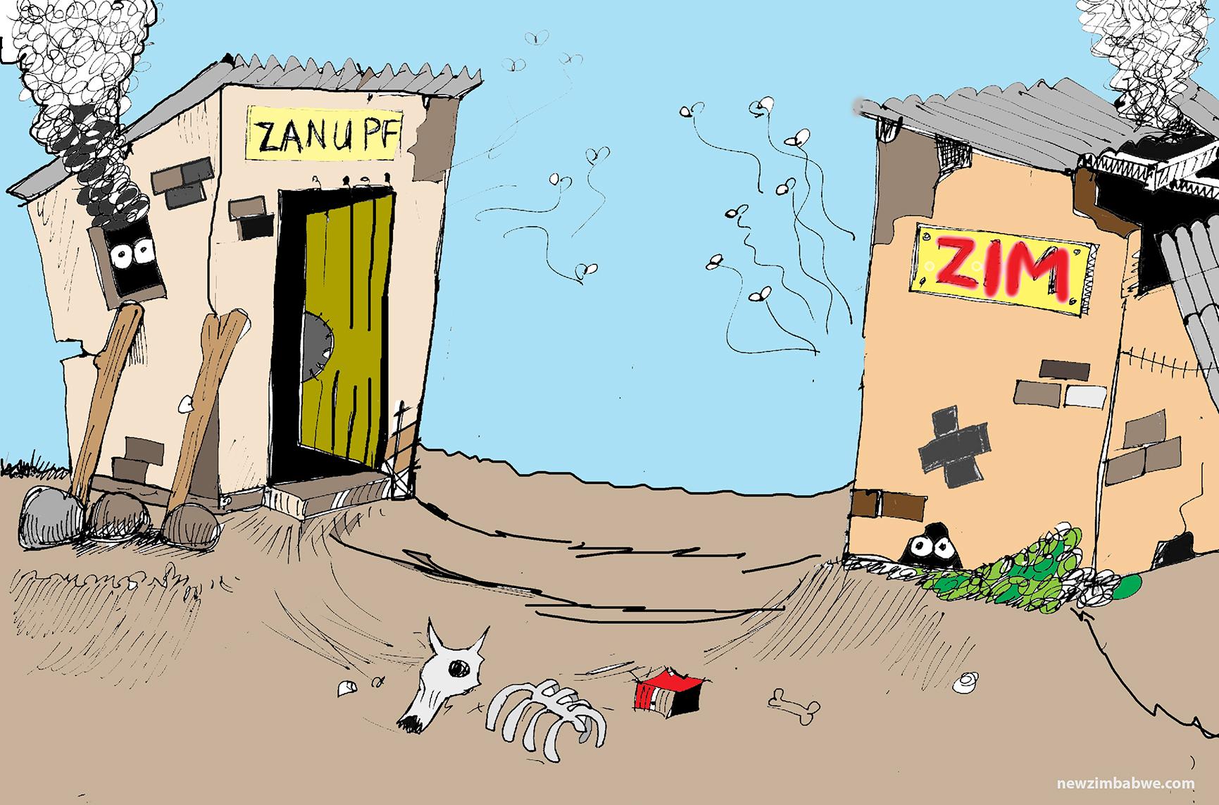 Of ZANU PF and Zimbabwe