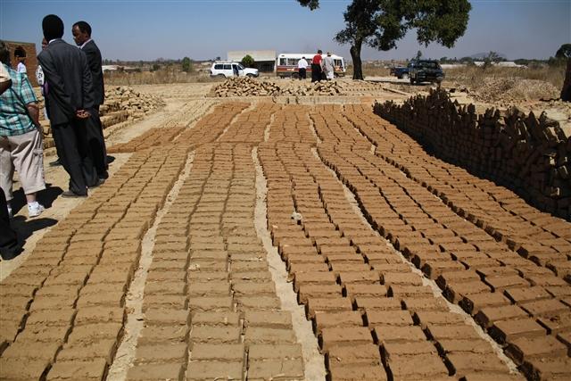 Zanu PF, Hwange Colliery, ZESA Bosses Engage In Illegal Brick-Making