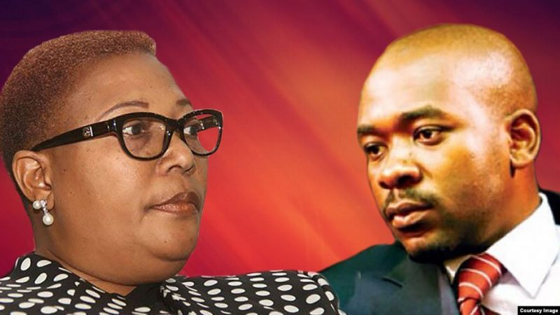 'Waste Of Time For MDC Alliance To File Court Challenge of MDC-T's Move to Seize Alliance'