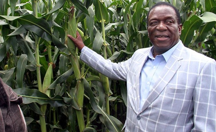 Command Agriculture A Huge Flop, Free Market A Success – Study