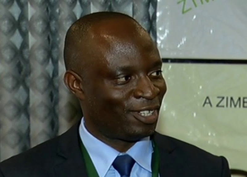ZESN Proposes Sweeping Electoral Reforms To Parly