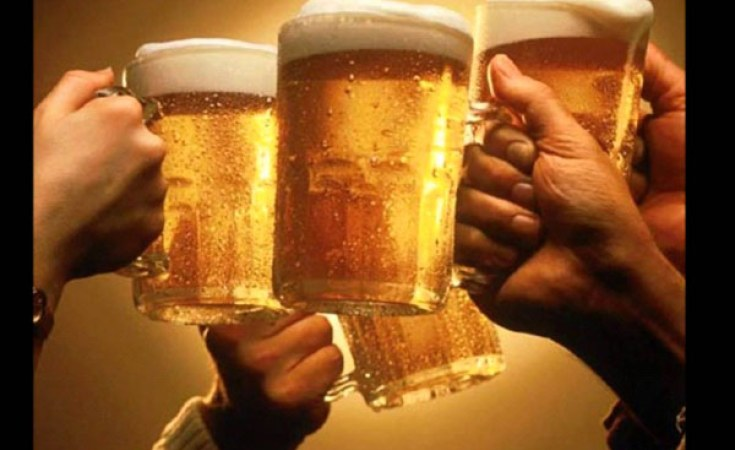 MPs talk down carefree 'beer loving' Zim-youths