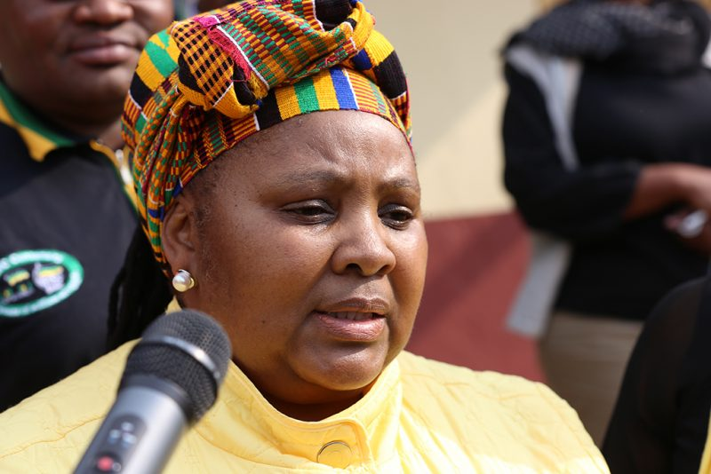 SA Minister Defends Decision To Give ANC Delegation Airlift To Zim