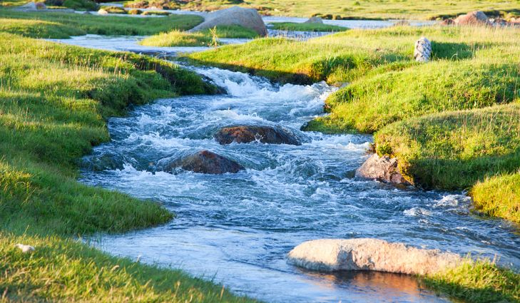 Boy (10) Drowns While Swimming In Stream