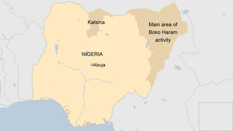 344 Kidnapped Nigerian Boys Handed To Govt