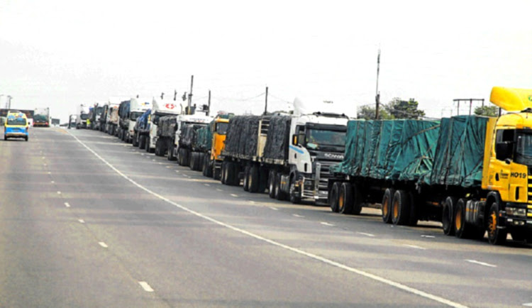 Chaos At Beitbridge 'Could Have Been Avoided': SA Road Freight Association