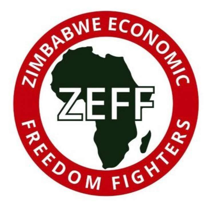 MDC-T Councillors Incompetent – New EFF Zimbabwe Leader