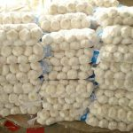 ZimTrade Urges Garlic Farmers To Focus On Increasing Exports