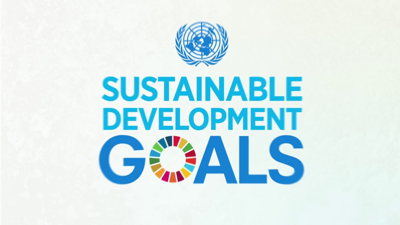 Call For An All-Inclusive Approach In SDGs