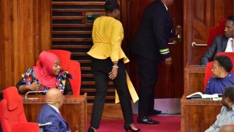 Female Tanzanian MPs Demand Apology For 'Tight' Trousers Incident