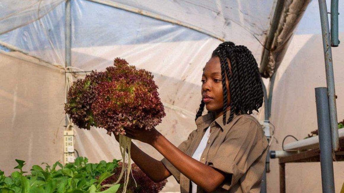 Mother, DaughtersIn Hydroponic Farming