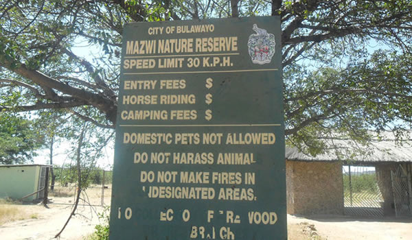 Prison Officers Poaching Firewood In Bulawayo's Nature Reserve