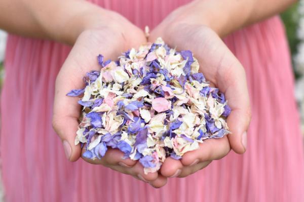 shropshire-petals-confetti