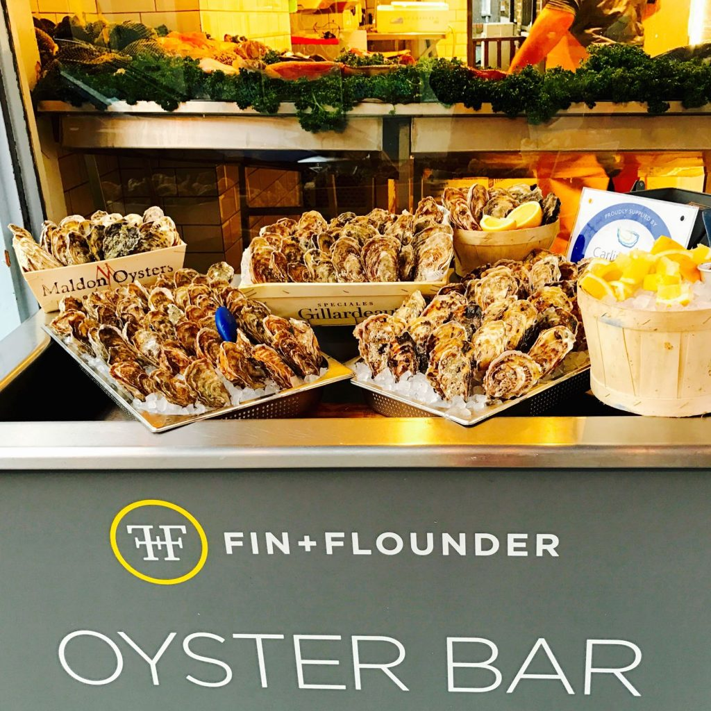 fin and flounder 外観