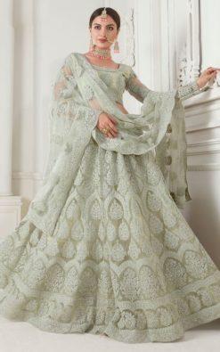 Mint Green Net With Satin Silk Embroidered Lehenga Choli