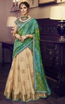 Light Green Handloom Silk Lehenga Choli