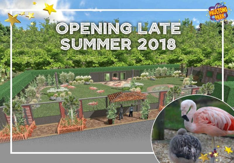 New Flamingo Enclosure at Paultons Park
