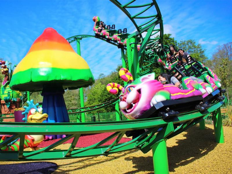 Cat-O-Pillar Coaster in Critter Creek at Paultons Park