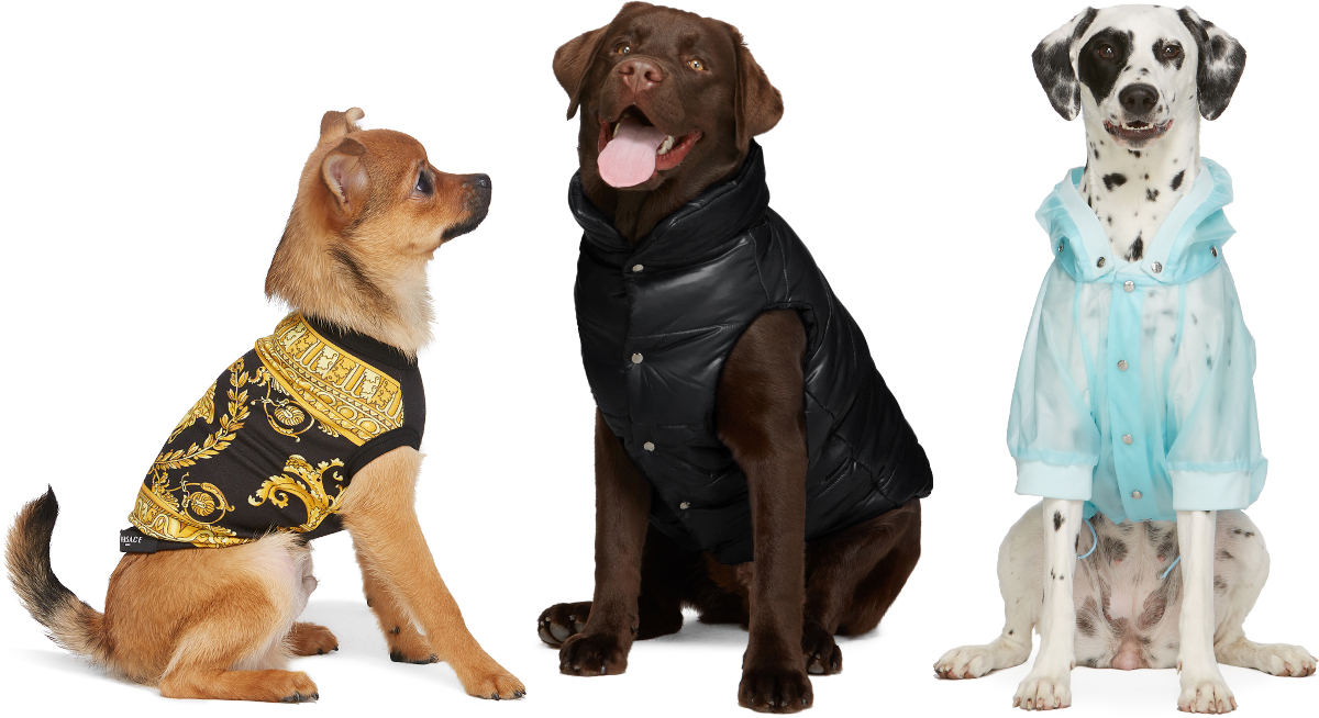SSENSE Launches Dogwear from Burberry, Versace, Heron Preston & more