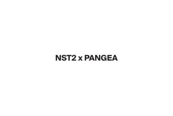 NST2XPANGEA_3-page-001