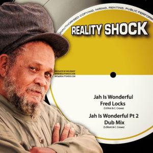 """Fred Locks - Jah Is Wonderful 10"""" Vinyl"""