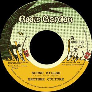 Brother Culture Sound Killer 7 vinyl