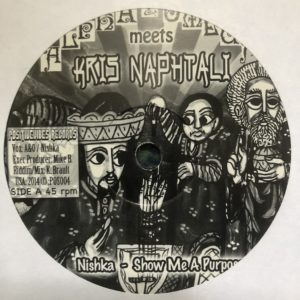 Nishka Show Me A Purpose 7 vinyl