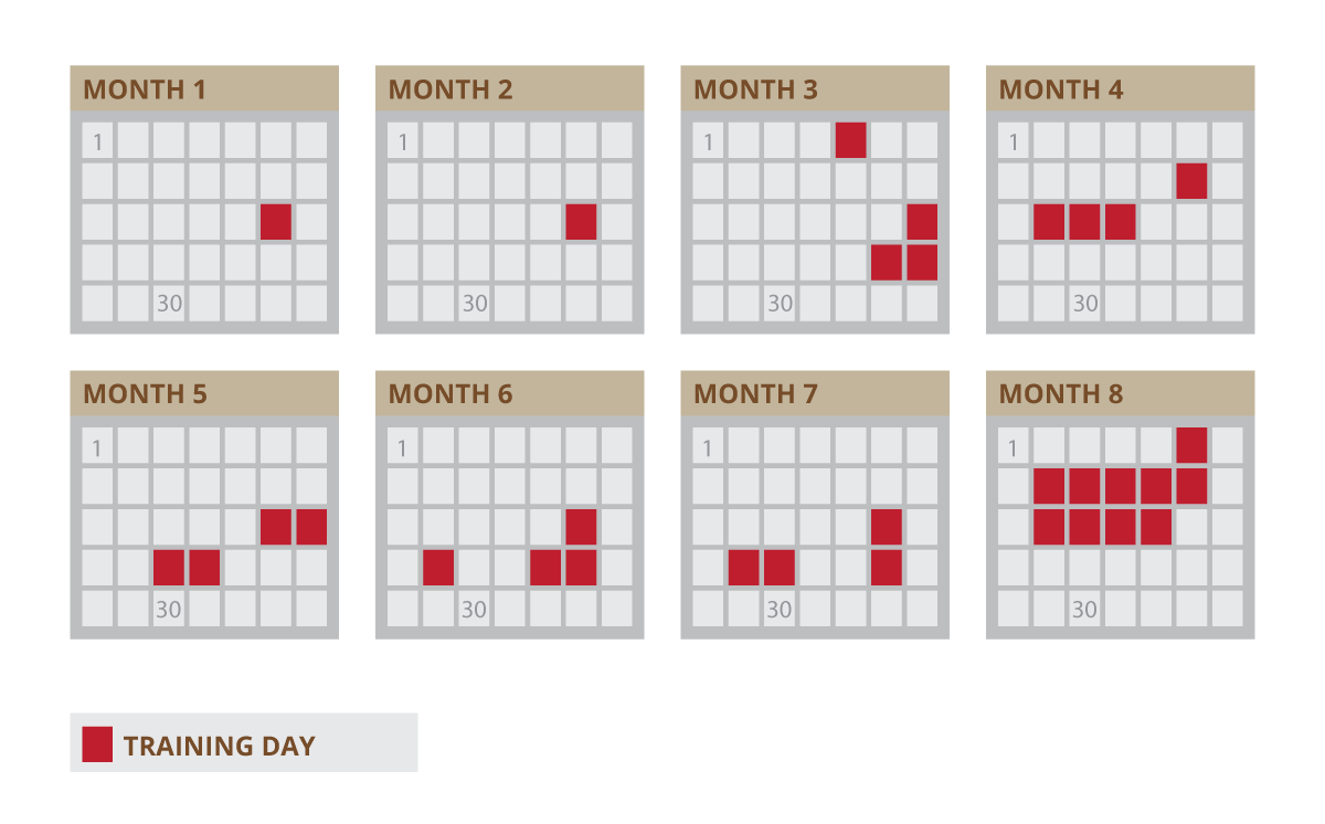 calendar showing example training days highlighted in red, covering 8 months