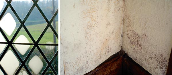Condensation on window panes and mould caused by condensation on walls