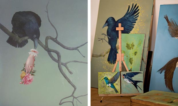 Stolen collage by Shelley Castle; A variety of Bird drawings and paintings