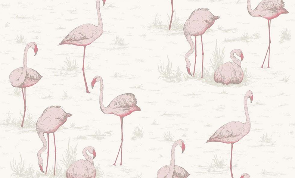 Cole&son-flamingos