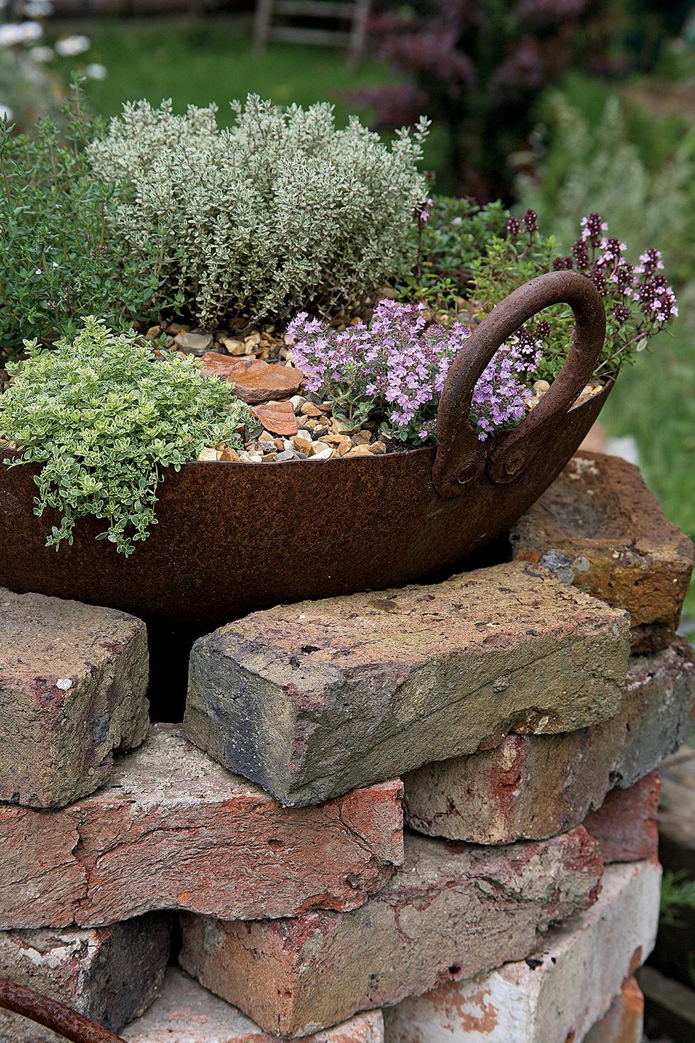 Bee-friendly herb tub garden craft
