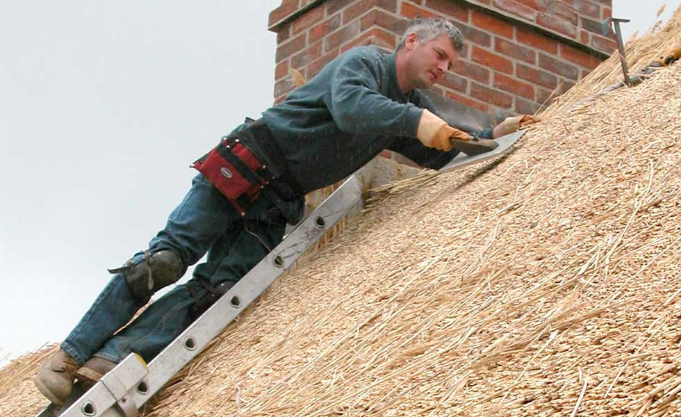 Thatching a roof renovation