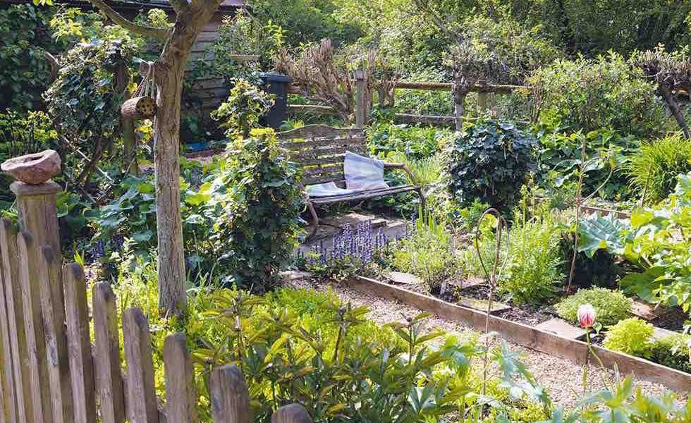 garden bench in a vegetable plot